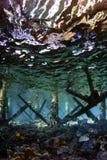 Brücke Unterwasser Stockfoto