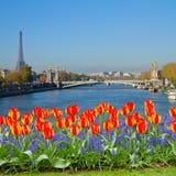 Brücke von Alexandre III, Paris stockfoto
