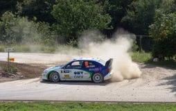 Brücke WRC Deutschland 2005 Stockfotografie