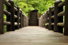 Brücke zu den Schritten zu stockbilder