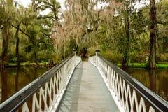 Brücke zu Eden Lizenzfreies Stockbild