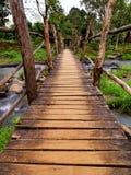 Brücke zum Dschungel lizenzfreie stockfotos