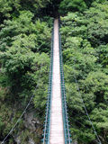 Brücke zum Dschungel Lizenzfreie Stockfotografie