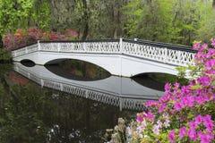 Brücke zum Paradies stockfotografie