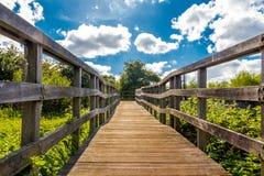 Brücke zur Zukunft Stockfotografie
