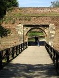 Brücken des Holzes Stockbilder