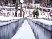 Brücken-Winter Stockbild