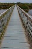 Brückengehweg durch Ozean über einem See lizenzfreies stockbild