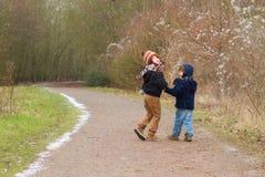 Brüder, die zusammen eine Landspur gehen lizenzfreie stockfotografie