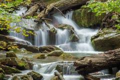 Brüllen Laufnebenfluß, Jefferson National Forest, USA Lizenzfreie Stockfotos