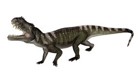 Brüllender Prestosuchus-Dinosaurier - 3D übertragen Lizenzfreie Stockfotografie