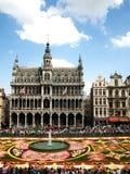 Brüssel-Blumenteppich lizenzfreie stockbilder