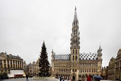 BRÜSSEL - 10. DEZEMBER: Weihnachtsbaum in Grand Place, der zentrale Platz von Brüssel bedeckte im Schnee Stockfotos