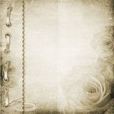 brąz albumowa pokrywa ilustracji