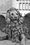 Brązowa lew statua. Obrazy Stock