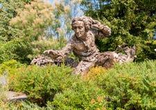 Brązowa rzeźba Carolus Linnaeus w Chicagowskim ogródzie botanicznym, usa Obrazy Stock