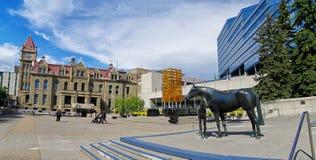 Brązowa statua dzwonił Rodziny konie w Calgary Obraz Royalty Free