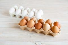 brązowe jajka białe Obraz Royalty Free
