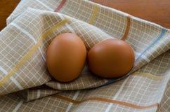 brązowe jajka organiczne obraz royalty free