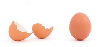 brązowe jajko Zdjęcie Stock