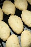 brązownika ciasta kulebiak surowy obraz stock