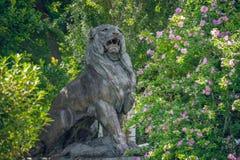 brązowy lew Wykwalifikowana Parkowa postać obrazy royalty free