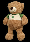 brązowy niedźwiedzi zabawka Zdjęcie Royalty Free