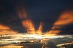 brązowy słońca promieni słońca obrazy royalty free