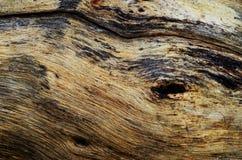 brązowy tła tekstury pomocniczym drewna brown drewniana tekstura z naturalnym tupocze Fotografia Royalty Free