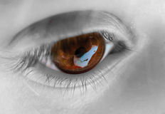 brązowy zbliżenia oko Obraz Royalty Free