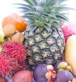 bär fruktt tropiskt Royaltyfri Fotografi