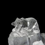 Bär im Eis Lizenzfreie Stockfotografie