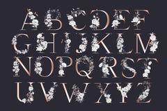 Br?llopalfabet Initialer med botaniska best?ndsdelar Monogramordning Blom- bokstavsdesign stock illustrationer