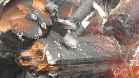 Brûlure de bois de chauffage clips vidéos
