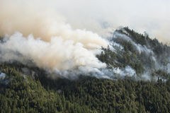Brûlure de montagne en incendie de forêt de la Californie Images stock
