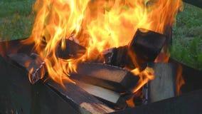 Brûlure et fumée en bois de bâtons banque de vidéos