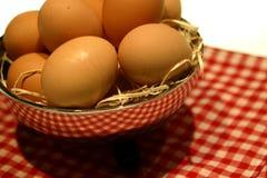 brązowe jajka zdjęcia stock