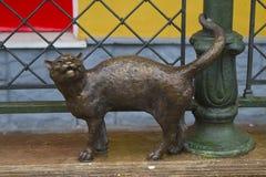 brązowy kot Fotografia Stock