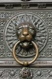 brązowy lew Obrazy Stock
