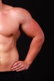 Braço forte de um atleta masculino Imagem de Stock Royalty Free