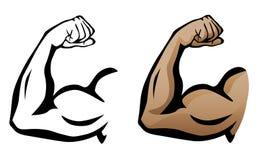 Braço muscular que dobra a ilustração do bíceps Imagens de Stock