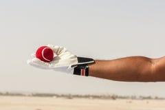Brać chwyta czerwona piłka z rękami Zdjęcia Royalty Free