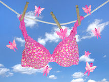 bra on clothesline with pink ribbon butterflies Royalty Free Stock Images