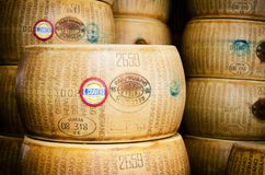 Many Parmigiano Reggiano cheese wheels Stock Photos