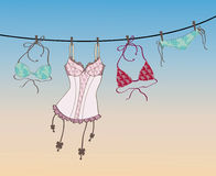 Bra and lingerie hanging on rope Royalty Free Stock Image