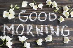 Bra morgon för ord med Jasmine Flowers arkivfoton
