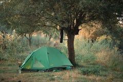 Bra morgon i ett tält nära träd Royaltyfri Fotografi