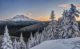 Bra morgon Mount Rainier royaltyfria bilder
