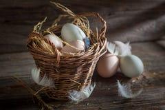 Bra och ekologiska ägg i korgen Arkivbild