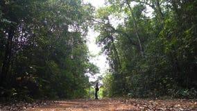 Bra seende asiatisk grabb att ta en bild av det tropiska långa skottet för skog extremt lager videofilmer